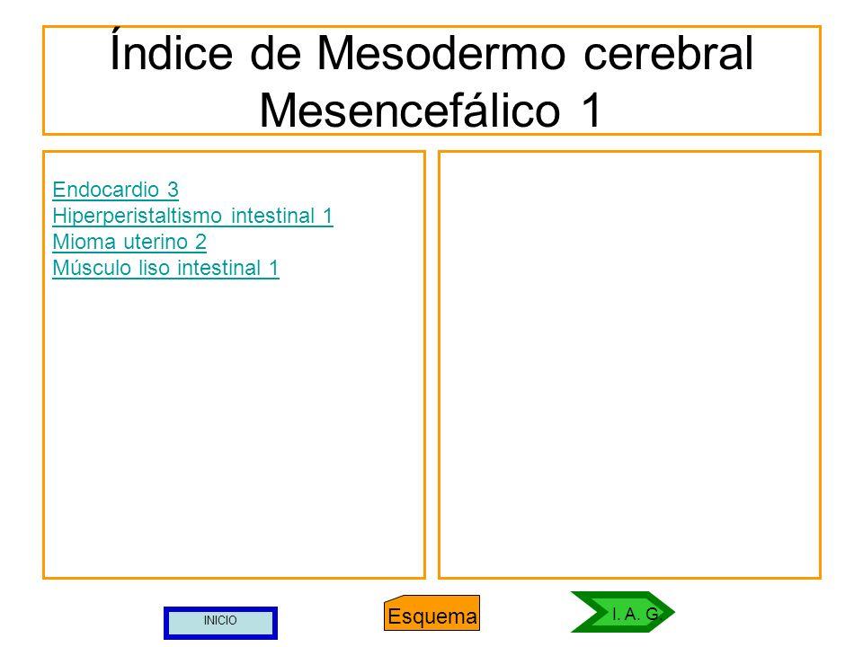 Índice de Mesodermo cerebral Mesencefálico 1