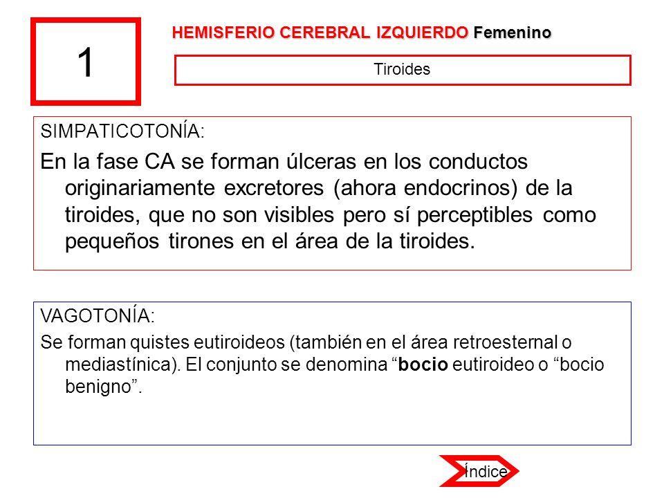 1 HEMISFERIO CEREBRAL IZQUIERDO Femenino. Tiroides. SIMPATICOTONÍA: