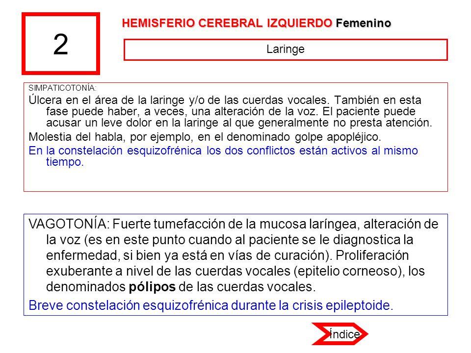 2 HEMISFERIO CEREBRAL IZQUIERDO Femenino. Laringe. SIMPATICOTONÍA: