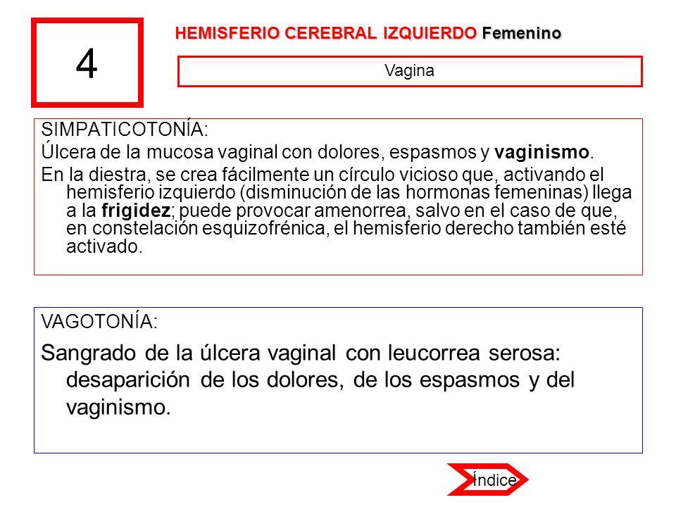 4 HEMISFERIO CEREBRAL IZQUIERDO Femenino. Vagina. SIMPATICOTONÍA: Úlcera de la mucosa vaginal con dolores, espasmos y vaginismo.
