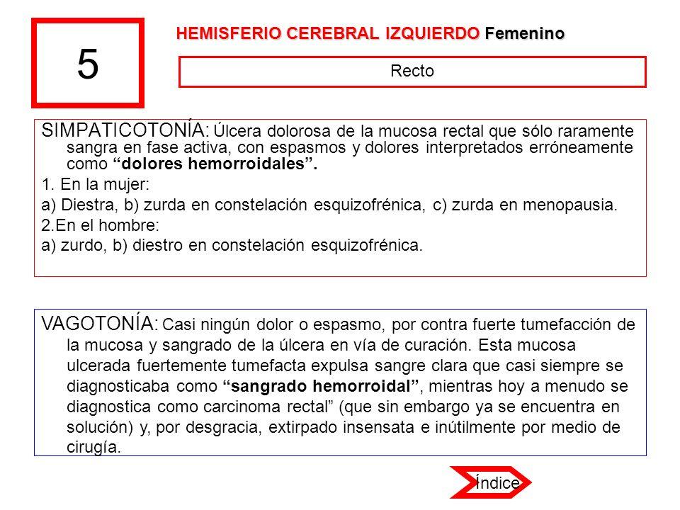 5 HEMISFERIO CEREBRAL IZQUIERDO Femenino. Recto.
