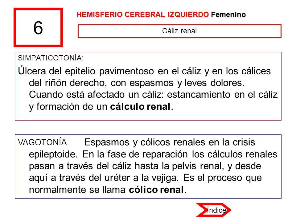 6 HEMISFERIO CEREBRAL IZQUIERDO Femenino. Cáliz renal. SIMPATICOTONÍA: