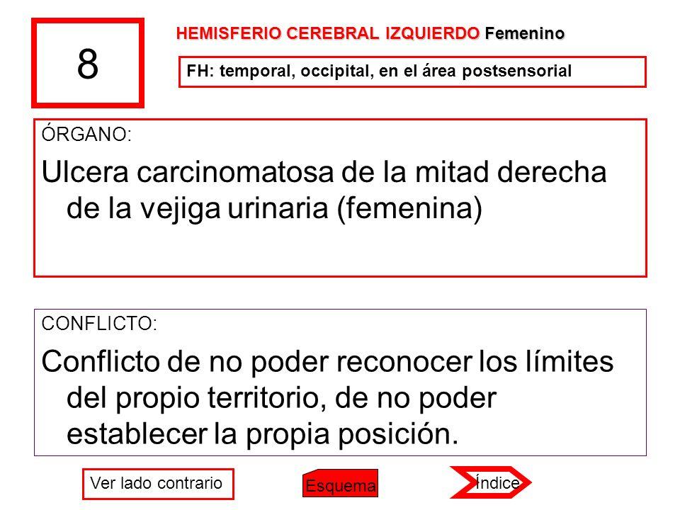 8 HEMISFERIO CEREBRAL IZQUIERDO Femenino. FH: temporal, occipital, en el área postsensorial. ÓRGANO: