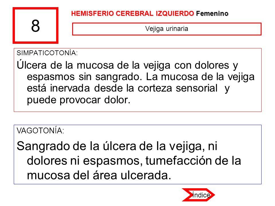 8 HEMISFERIO CEREBRAL IZQUIERDO Femenino. Vejiga urinaria. SIMPATICOTONÍA: