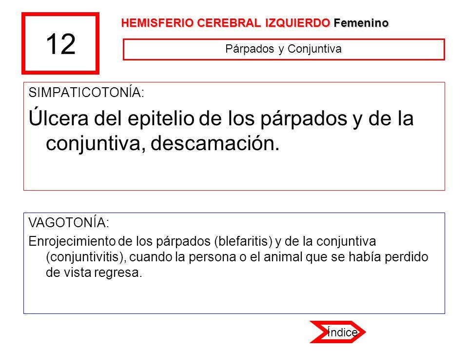 12 HEMISFERIO CEREBRAL IZQUIERDO Femenino. Párpados y Conjuntiva. SIMPATICOTONÍA: