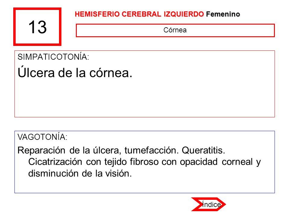 13 HEMISFERIO CEREBRAL IZQUIERDO Femenino. Córnea. SIMPATICOTONÍA: Úlcera de la córnea. VAGOTONÍA: