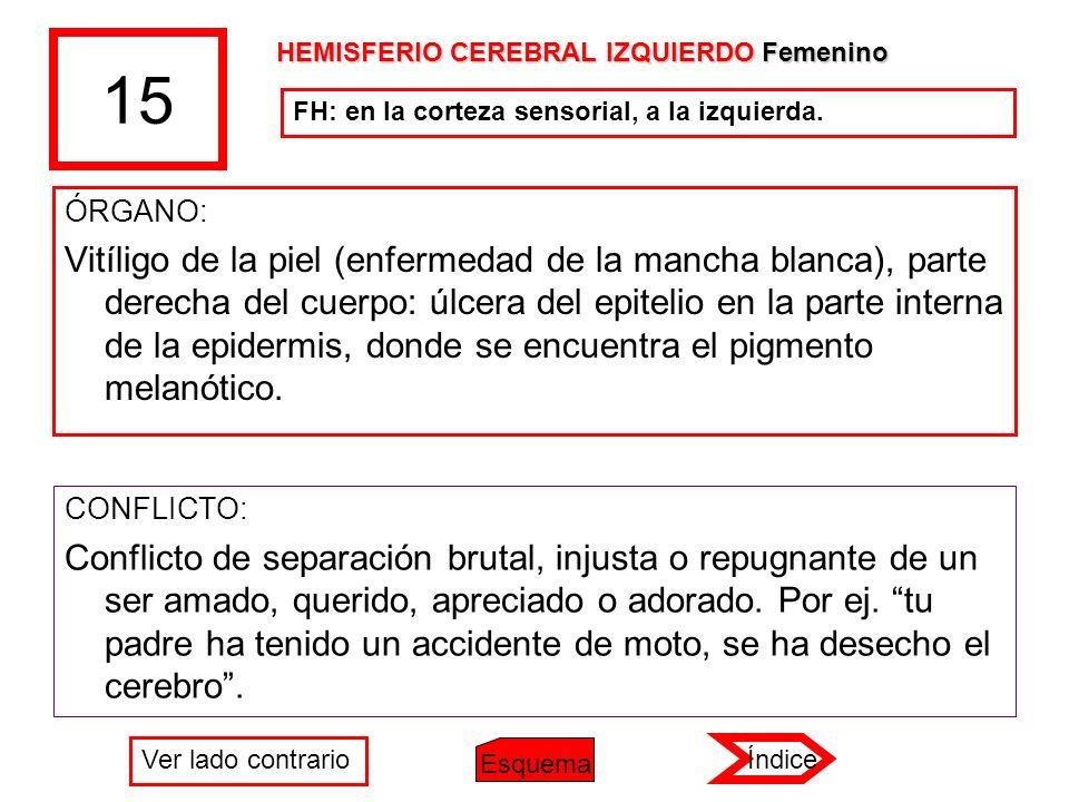 15 HEMISFERIO CEREBRAL IZQUIERDO Femenino. FH: en la corteza sensorial, a la izquierda. ÓRGANO: