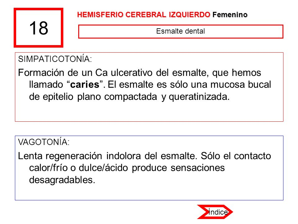 18 HEMISFERIO CEREBRAL IZQUIERDO Femenino. Esmalte dental. SIMPATICOTONÍA: