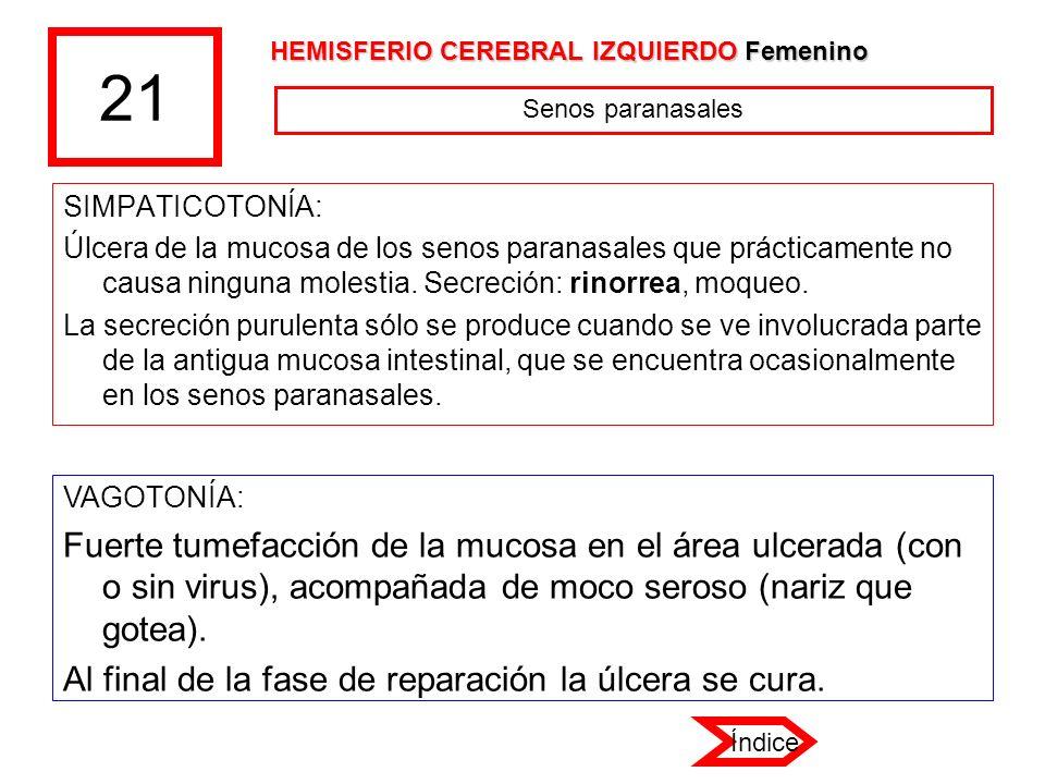 21 HEMISFERIO CEREBRAL IZQUIERDO Femenino. Senos paranasales. SIMPATICOTONÍA: