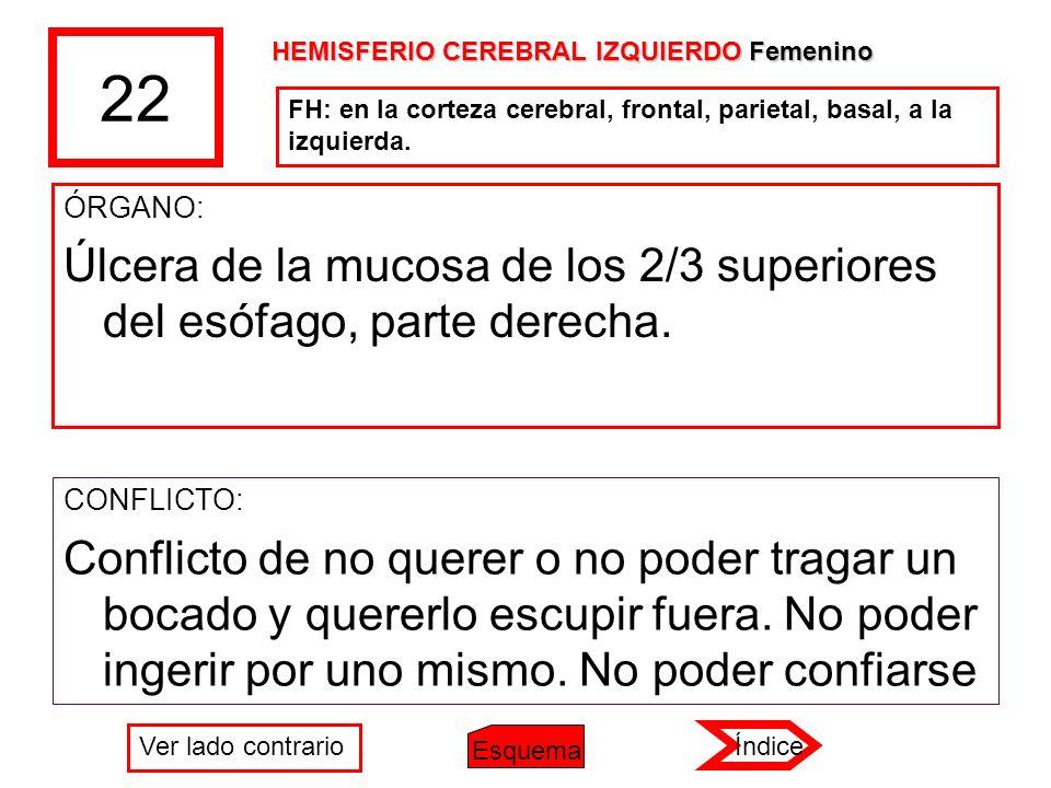 22 HEMISFERIO CEREBRAL IZQUIERDO Femenino. FH: en la corteza cerebral, frontal, parietal, basal, a la izquierda.