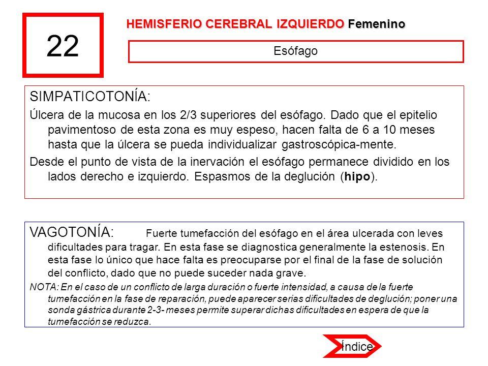 22 HEMISFERIO CEREBRAL IZQUIERDO Femenino. Esófago. SIMPATICOTONÍA: