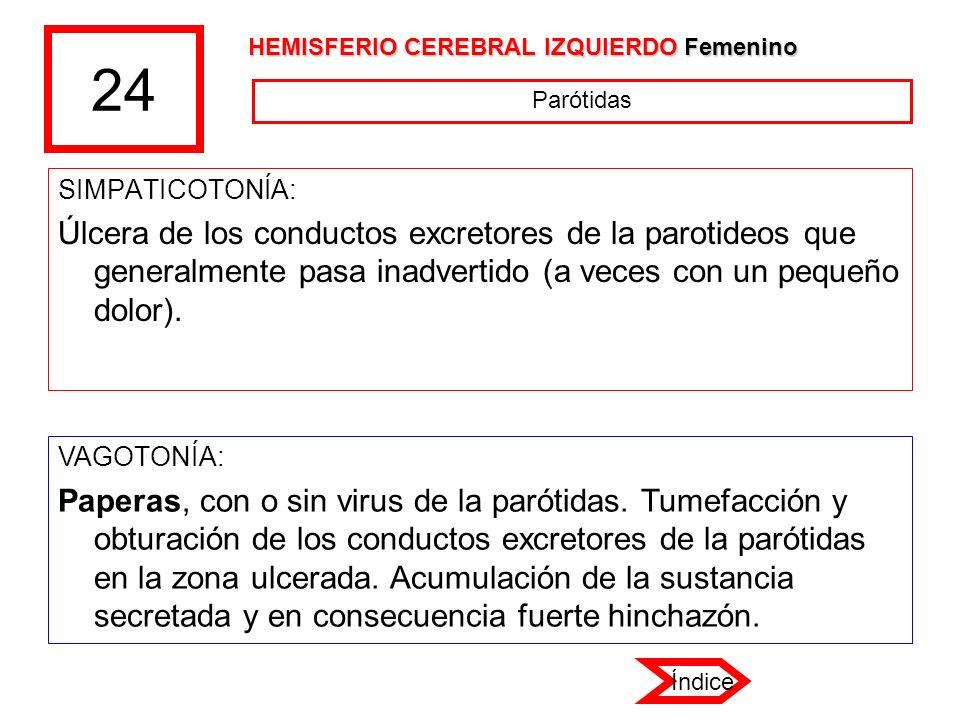 24 HEMISFERIO CEREBRAL IZQUIERDO Femenino. Parótidas. SIMPATICOTONÍA: