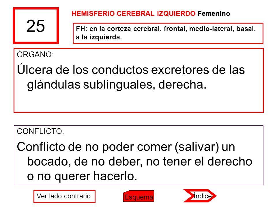 25 HEMISFERIO CEREBRAL IZQUIERDO Femenino. FH: en la corteza cerebral, frontal, medio-lateral, basal, a la izquierda.