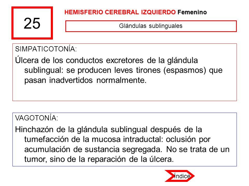 Glándulas sublinguales