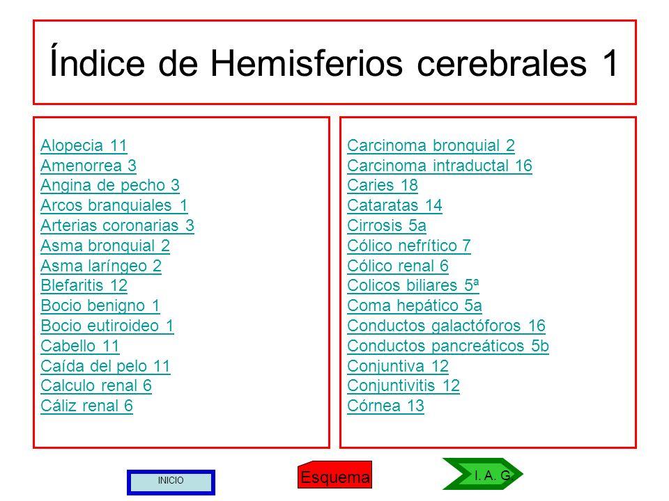 Índice de Hemisferios cerebrales 1
