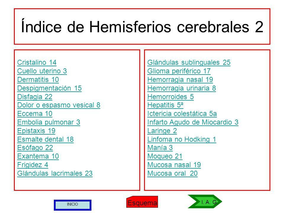 Índice de Hemisferios cerebrales 2