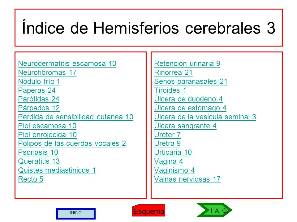 Índice de Hemisferios cerebrales 3