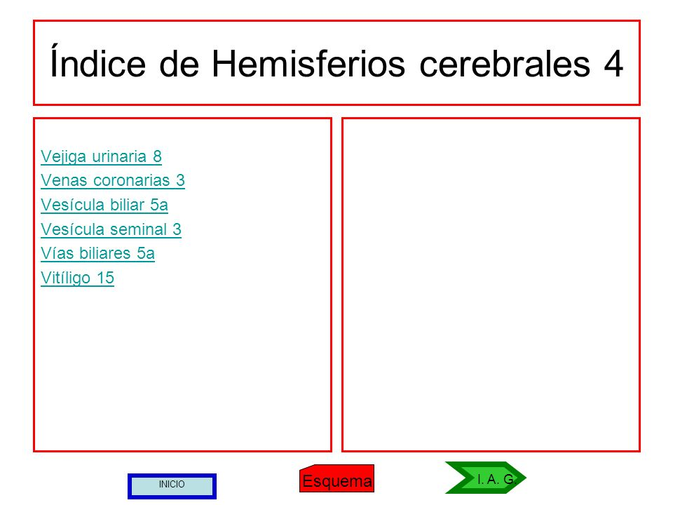 Índice de Hemisferios cerebrales 4