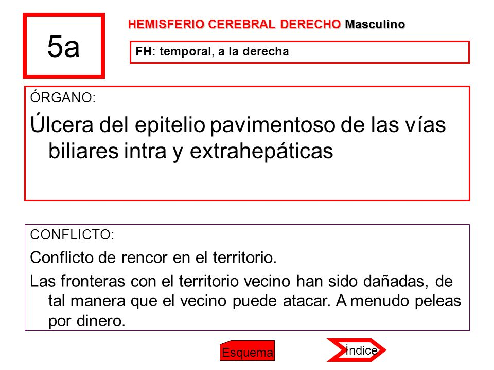5a HEMISFERIO CEREBRAL DERECHO Masculino. FH: temporal, a la derecha. ÓRGANO: