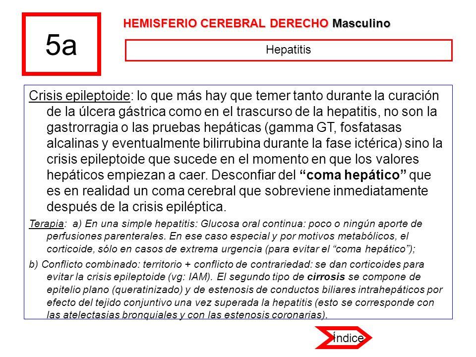5a HEMISFERIO CEREBRAL DERECHO Masculino. Hepatitis.