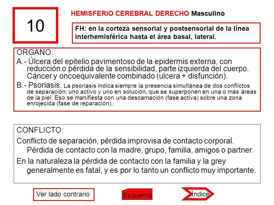 10 HEMISFERIO CEREBRAL DERECHO Masculino. FH: en la corteza sensorial y postsensorial de la línea interhemisférica hasta el área basal, lateral.