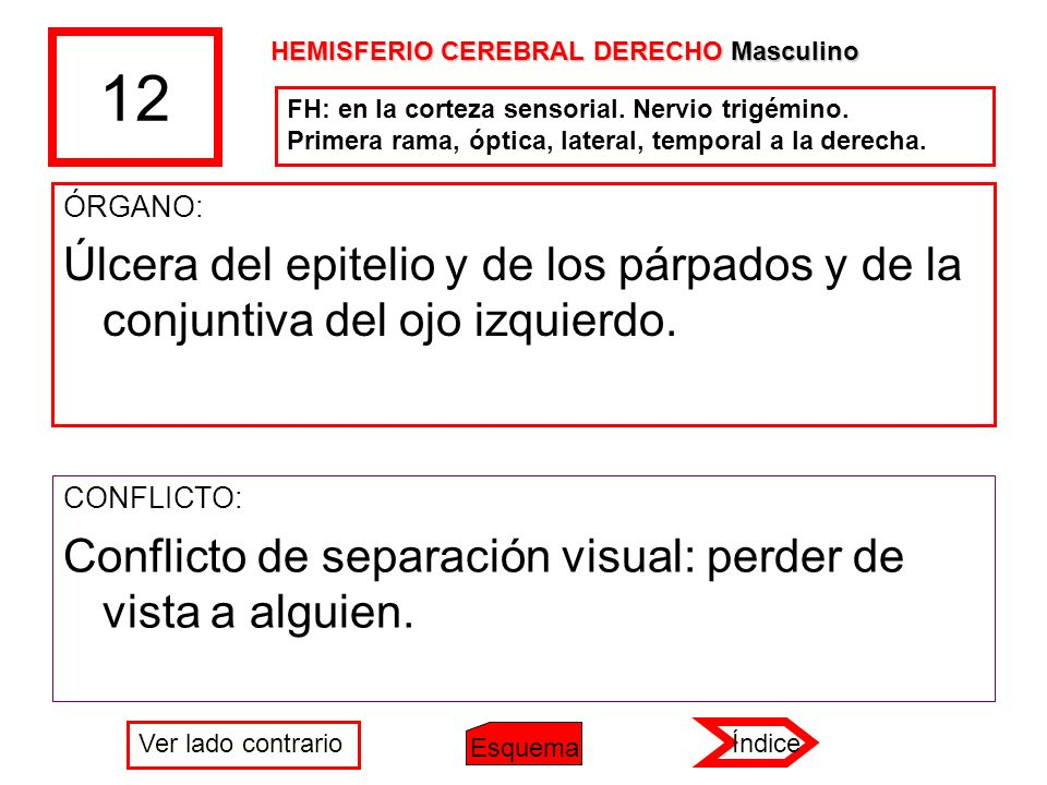 12 HEMISFERIO CEREBRAL DERECHO Masculino. FH: en la corteza sensorial. Nervio trigémino. Primera rama, óptica, lateral, temporal a la derecha.