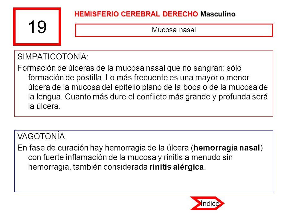 19 HEMISFERIO CEREBRAL DERECHO Masculino. Mucosa nasal. SIMPATICOTONÍA: