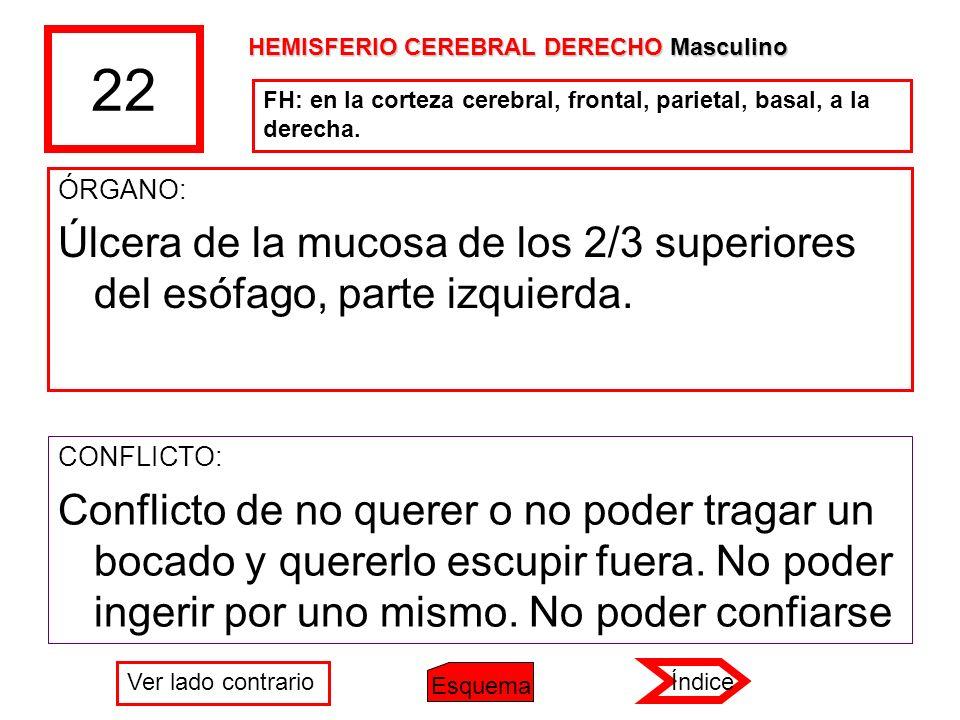 22 HEMISFERIO CEREBRAL DERECHO Masculino. FH: en la corteza cerebral, frontal, parietal, basal, a la derecha.