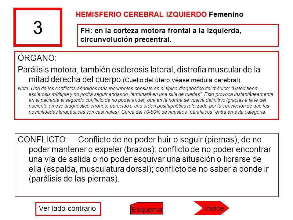 3 HEMISFERIO CEREBRAL IZQUIERDO Femenino. FH: en la corteza motora frontal a la izquierda, circunvolución precentral.