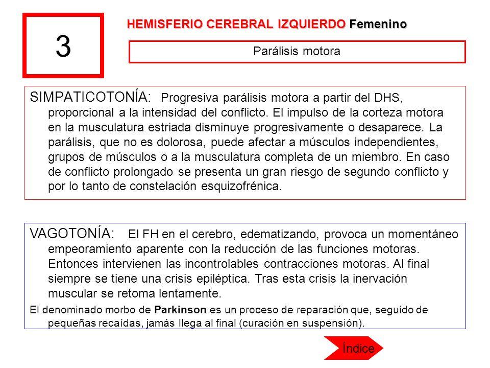 3 HEMISFERIO CEREBRAL IZQUIERDO Femenino. Parálisis motora.