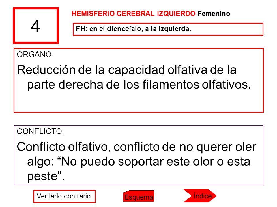 4 HEMISFERIO CEREBRAL IZQUIERDO Femenino. FH: en el diencéfalo, a la izquierda. ÓRGANO: