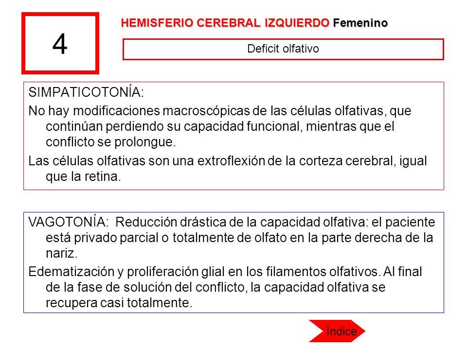 4 HEMISFERIO CEREBRAL IZQUIERDO Femenino. Deficit olfativo. SIMPATICOTONÍA: