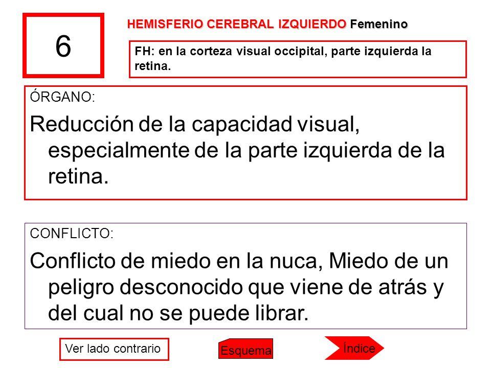 6 HEMISFERIO CEREBRAL IZQUIERDO Femenino. FH: en la corteza visual occipital, parte izquierda la retina.