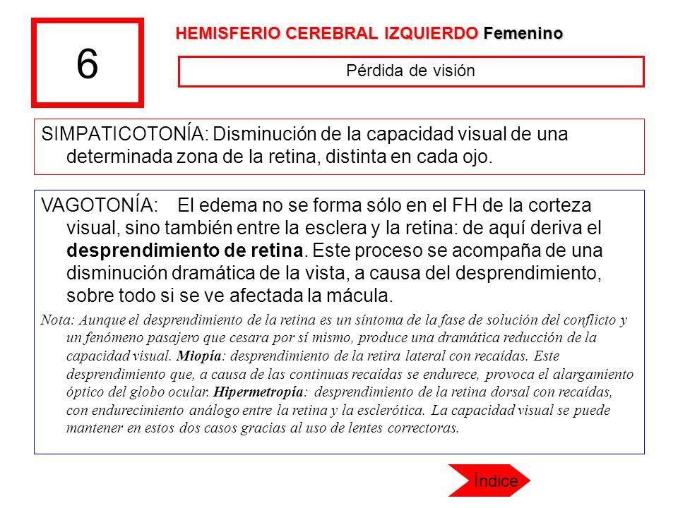 6 HEMISFERIO CEREBRAL IZQUIERDO Femenino. Pérdida de visión.
