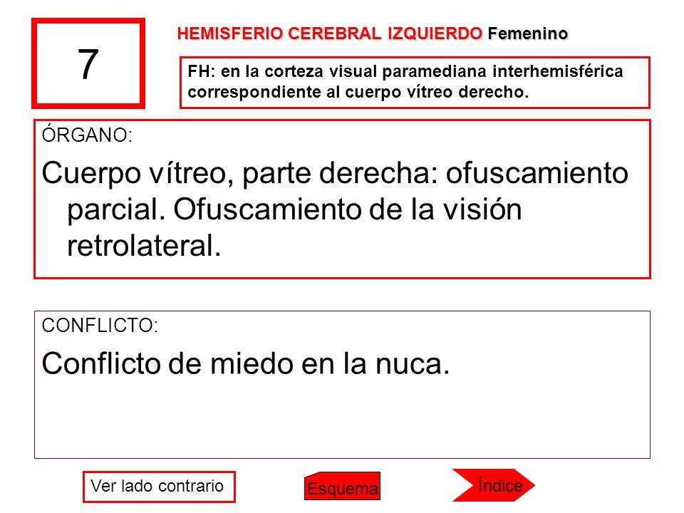 7 HEMISFERIO CEREBRAL IZQUIERDO Femenino. FH: en la corteza visual paramediana interhemisférica correspondiente al cuerpo vítreo derecho.