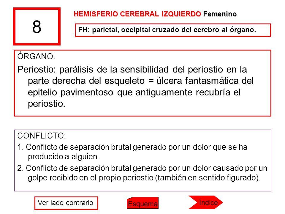 8 HEMISFERIO CEREBRAL IZQUIERDO Femenino. FH: parietal, occipital cruzado del cerebro al órgano. ÓRGANO: