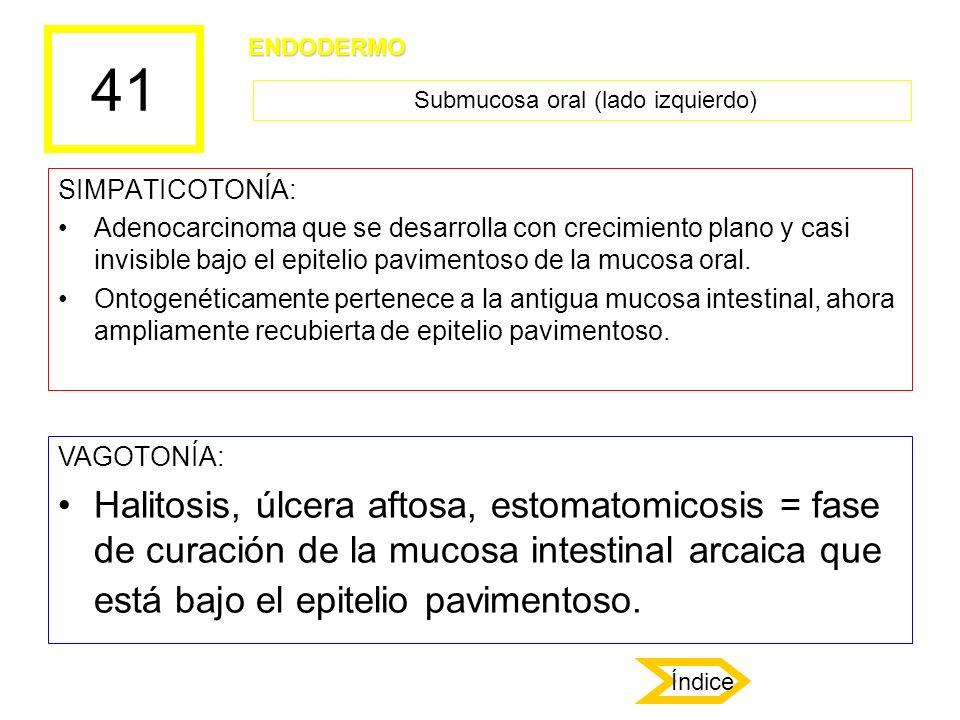 Submucosa oral (lado izquierdo)