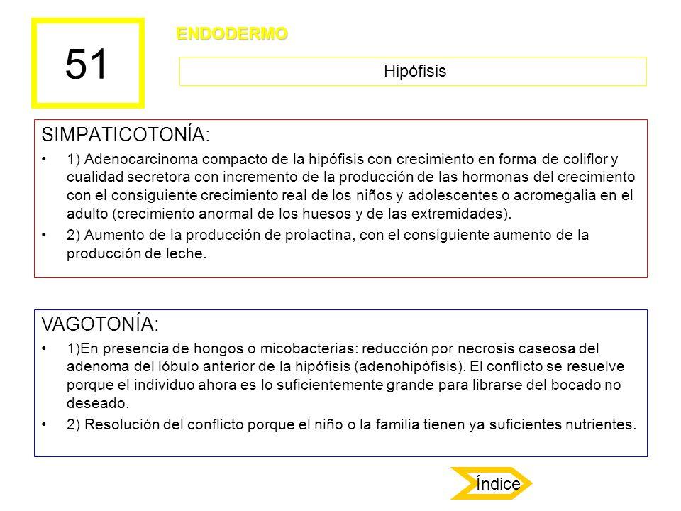 51 SIMPATICOTONÍA: VAGOTONÍA: ENDODERMO Hipófisis Índice