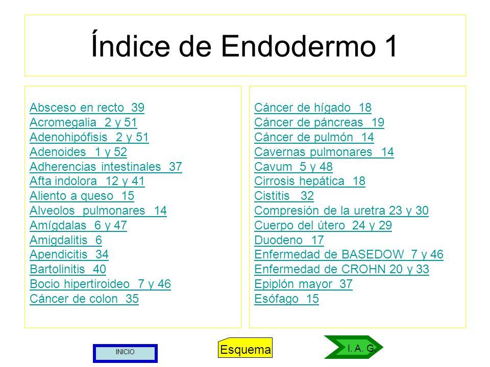 Índice de Endodermo 1 Absceso en recto 39 Acromegalia 2 y 51