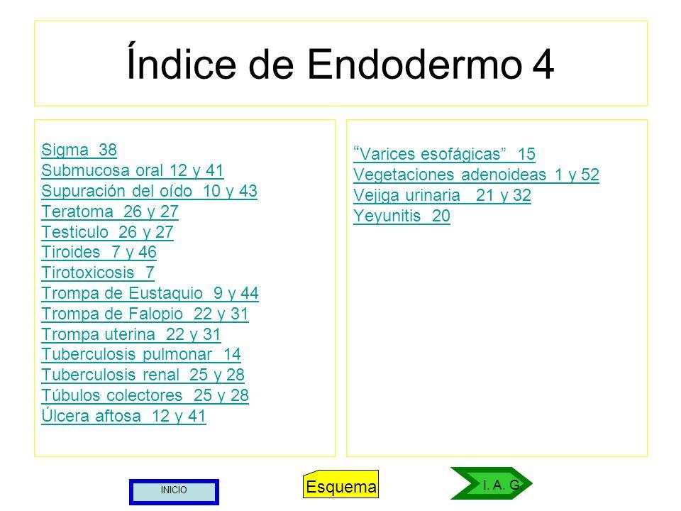 Índice de Endodermo 4 Varices esofágicas 15 Sigma 38