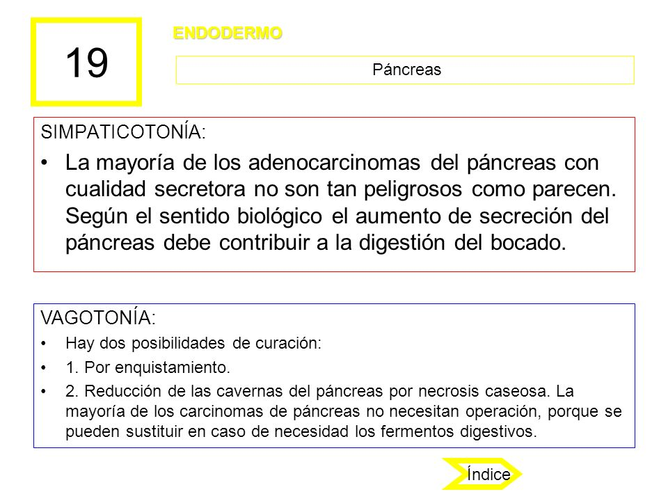 19 ENDODERMO. Páncreas. SIMPATICOTONÍA: