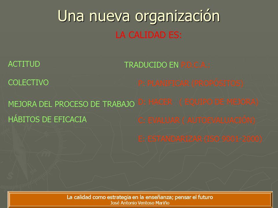 Una nueva organización
