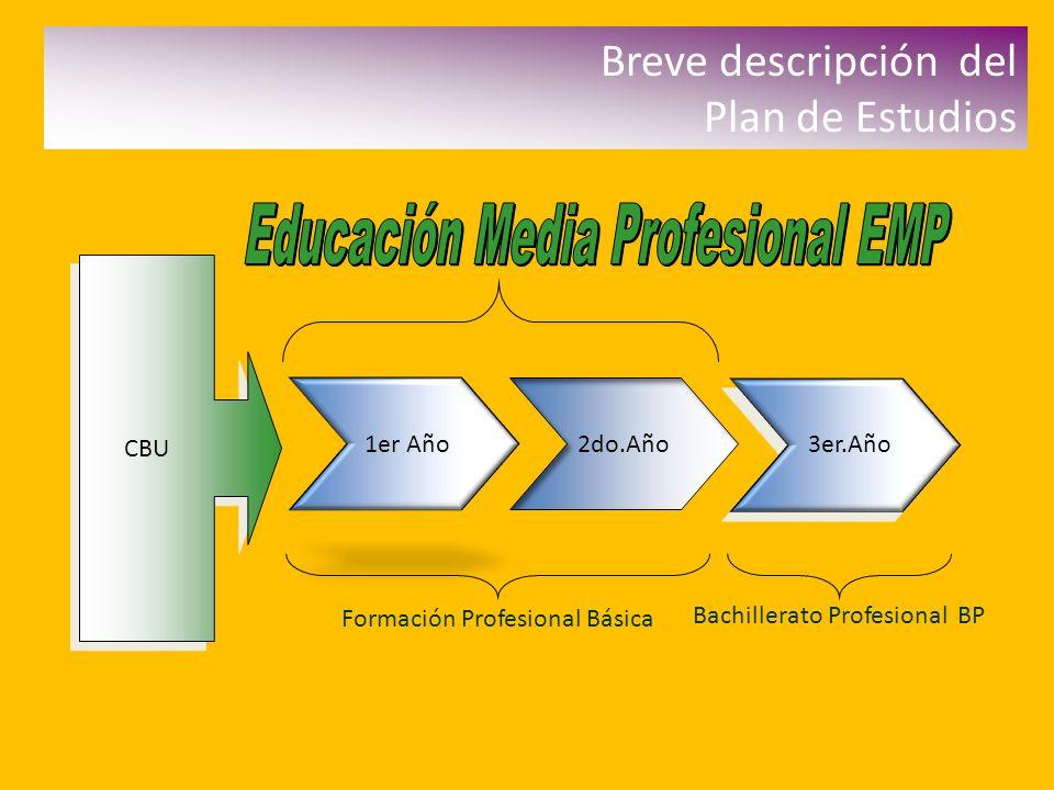 Educación Media Profesional EMP