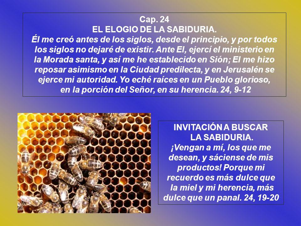 EL ELOGIO DE LA SABIDURIA.