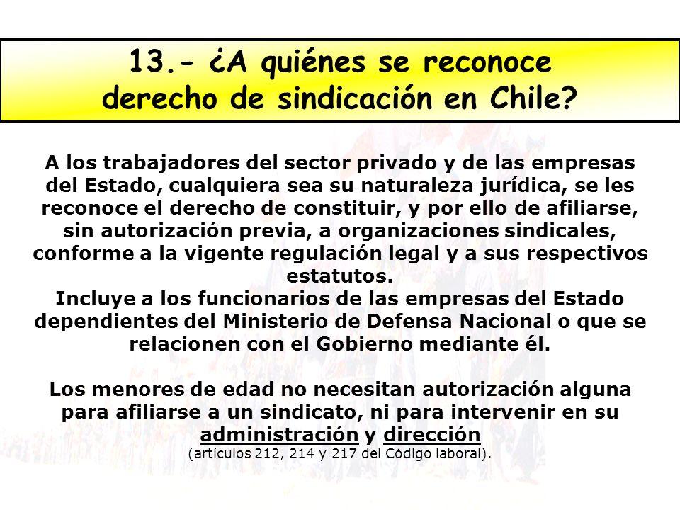 13.- ¿A quiénes se reconoce derecho de sindicación en Chile