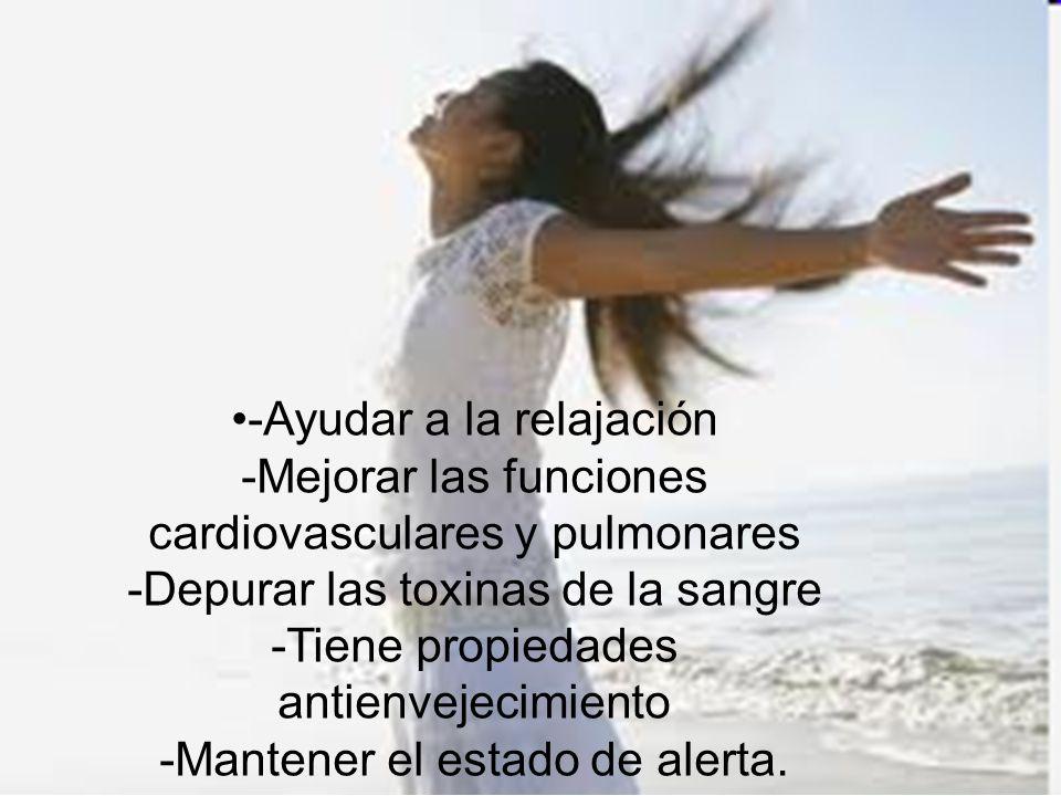 -Ayudar a la relajación -Mejorar las funciones cardiovasculares y pulmonares -Depurar las toxinas de la sangre -Tiene propiedades antienvejecimiento -Mantener el estado de alerta.