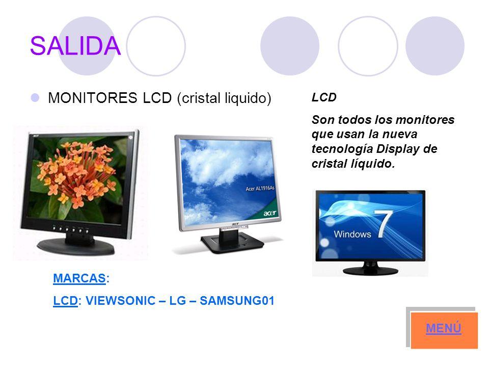 SALIDA MONITORES LCD (cristal liquido) LCD