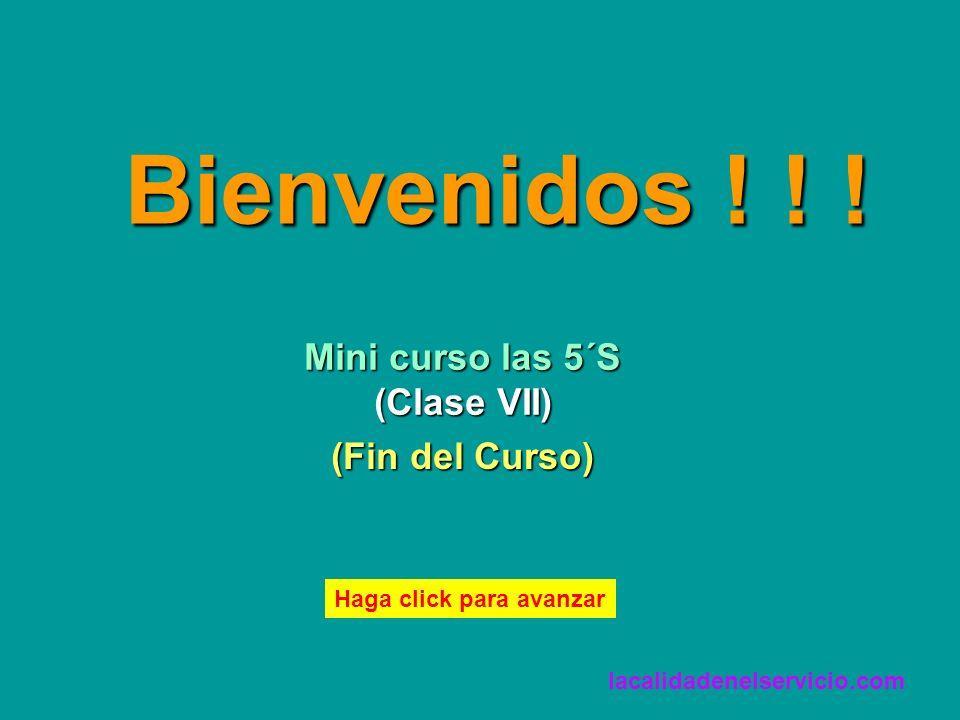 Bienvenidos ! ! ! Mini curso las 5´S (Clase VII) (Fin del Curso)