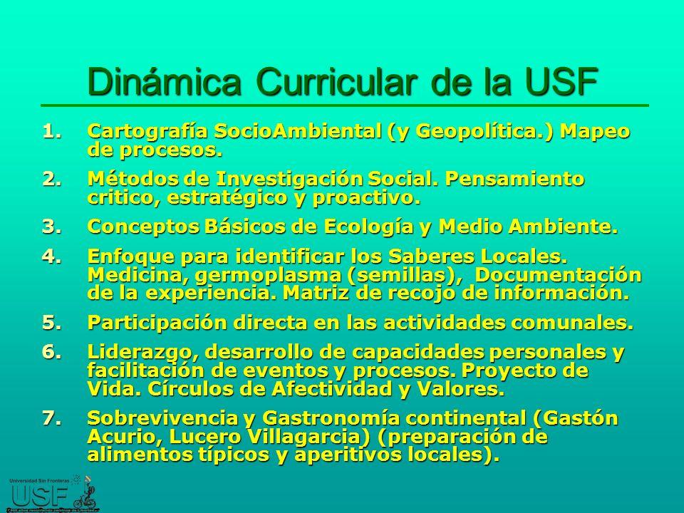 Dinámica Curricular de la USF