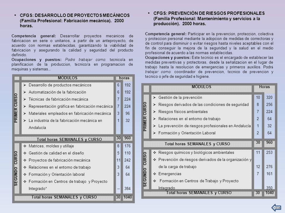 CFGS: PREVENCIÓN DE RIESGOS PROFESIONALES (Familia Profesional: Mantenimiento y servicios a la producción). 2000 horas.